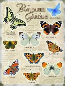 INSEGNA-METALLO-SMALTATO-Butterflies-In-Our-Garden-GRANDE-og-4030