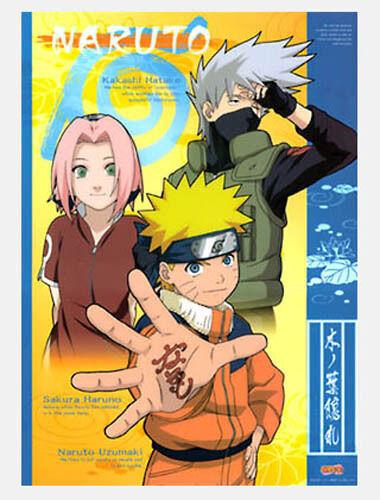Naruto Poster Sakura, Naruto and Kakashi Clear Poster Anime MINT