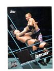 Topps Single Piece of Authentic 2011 Wrestling Trading Cards