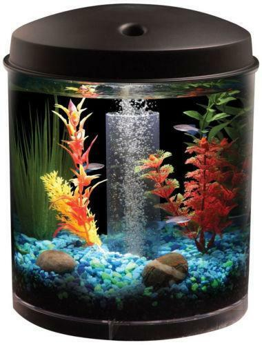 2 Gallon Fish Tank Ebay