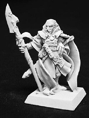 Valandil Crusaders Mage Reaper Miniatures Warlord Caster Wizard Fighter Magic