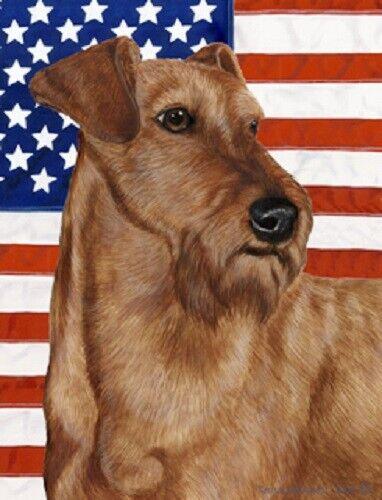 Patriotic (D2) Garden Flag - Irish Terrier 322201