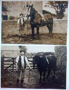 1920s Postcards