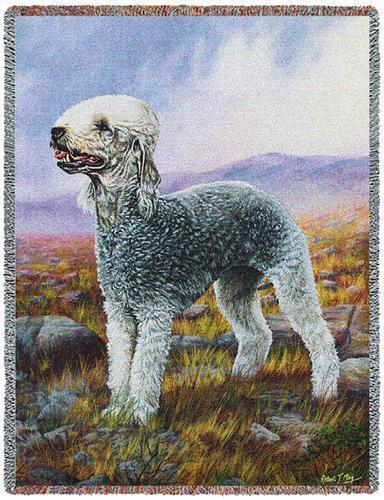 Throw Tapestry Afghan - Bedlington Terrier by Robert May 6370