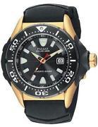 Pulsar Divers Watch