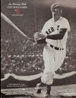Ted Williams MLB Programs