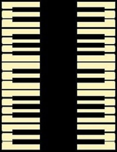 5 X 8 MUSICAL ROOM AREA RUG WITH BACK TO BACK PIANO KEYS BLACK AND IVORY