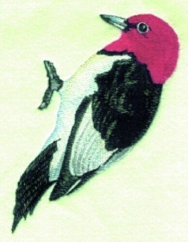Embroidered Sweatshirt - Woodpecker BT2825