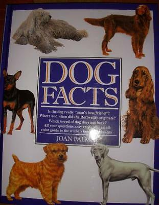 Dog Facts