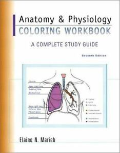 Anatomy and Physiology Coloring Workbook : A Complete Study Guide by Elaine  N. Marieb (2002, Paperback)