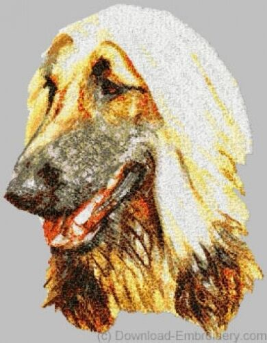 Embroidered Ladies Short-Sleeved T-Shirt - Afghan Hound DLE1455