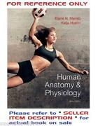Human Anatomy Physiology 9th Edition
