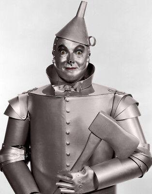 Der Zauberer von oz Tin Man, Fotodruck (Der Zauberer Von Oz Tinman)