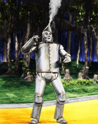 Der Zauberer von oz Tin Man, Aufdruck (Der Zauberer Von Oz Tinman)