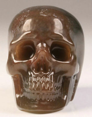 SALE 2 IN Genuine Green Moss Agate Carved Crystal Skull, Realistic, Healing #618