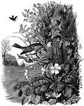Robins Napery Nest