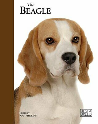 Beagle - Best of Breed by Ann Phillips Book The Fast Free