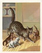 Antique Cat Print