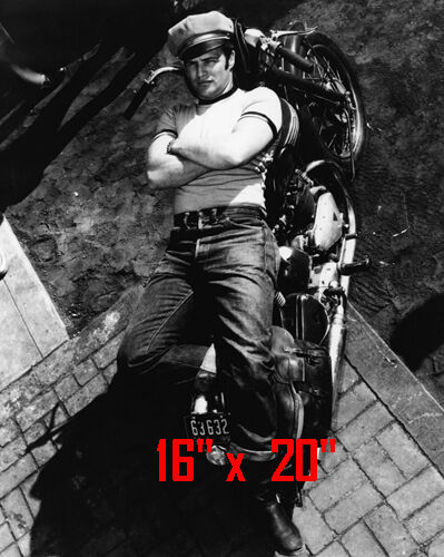 "Marlon Brando~Triumph Motorcycle~Biker~Wild One~Photo~ Poster 16"" x  20"""