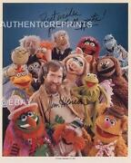 Jim Henson Signed