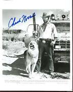 Chuck Norris Autograph