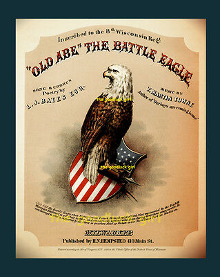 Civil War Wisconsin 8th Regiment OLD ABE BATTLE EAGLE Vintage 8x10 Art (Eagle Art Print)