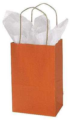 Paper Shopping Bags 25 Burnt Orange Retail Merchandise 5 X 3 X 8