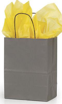 Paper Shopping Bags Grey 25 Kraft Retail Merchandise 8 X 4 X 10 Cub