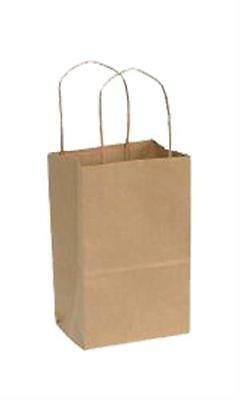 Paper Shopping Bags 250 Kraft Gift Merchandise 5 14 X 3 12 X 8 14 Recycled