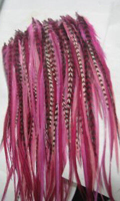 Five 4″- 6″ Pink with Grizzly and Brown Feathers For Hair Extension Crafting Pieces