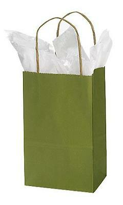Paper Shopping Bags 25 Rain Forest Green Merchandise Gift 5 X 3 X 8