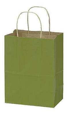 Paper Shopping Bags 100 Medium Green Retail Gift 8 X 5 X 10 Cub Kraft