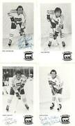 Chicago Cougars