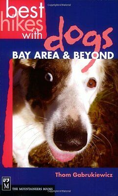Best Hikes With Dogs: Bay Area &