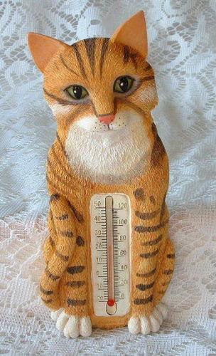 Cat Thermometer Ebay