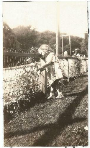 Vintage Wire Fence Ebay