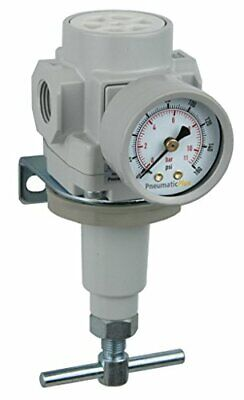 Pneumaticplus Air Regulator 12 Npt With Bracket Gauge Sar400t-n04bg