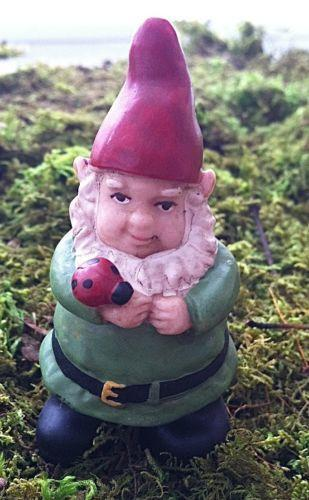 Female Garden Gnomes: Lady Gnome