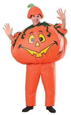 Inflatable Pumpkin Adult Standard Size Costume](Adults Pumpkin Costume)