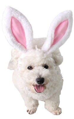 nd Katze Osterhase Ohren Stirnband Kostüm Kleid Kostüm Outfit (Weißen Hund Ohren Stirnband)