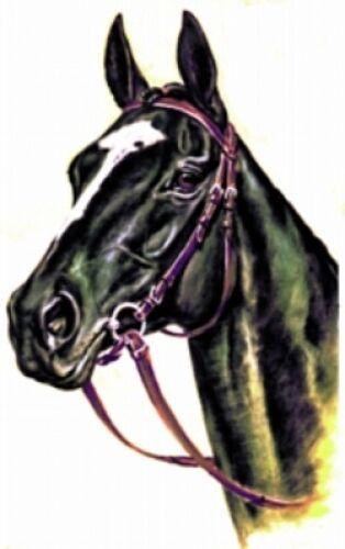 Embroidered Fleece Jacket - Black Horse BT2476 Sizes S - XXL