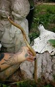 Pagan Jewelry