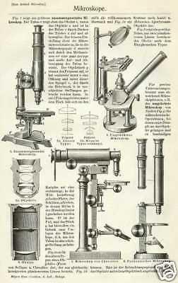 MIKROSKOP Mikroskopie Zeiss HOLZSTICHE + Text um 1905 Binokular Bild-Mikroskop