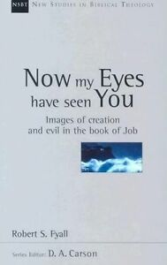 Now My Eyes Have Seen You: Justice, Mercy and Legal Institutions by Robert...