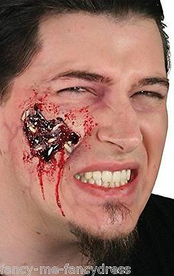 Halloween Maggots Bloody Zombie Special Effects Make Up Fancy Dress Costume Kit