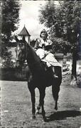 Pferde Ansichtskarten