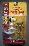 Memory Lane Charlie Brown