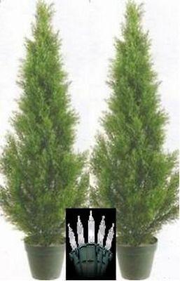 2 CEDAR 3' OUTDOOR TOPIARY TREE UV PINE ARTIFICIAL 5 4 CYPRESS CHRISTMAS -