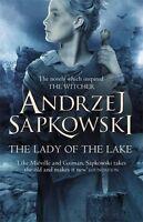 The Lady Of The Lake De Andrzej Sapkowski (the Witcher Saga) -  - ebay.es