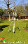Platform Ladder Ladders